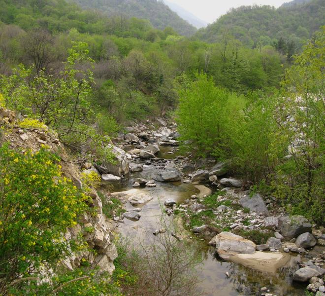 Чепинска река